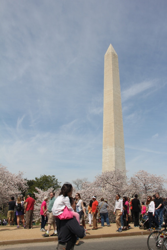 Cherry Blossom festival in Washington, DC by Shamira Muhammad